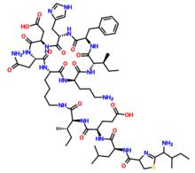 杆菌肽的功效和作用
