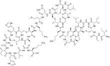 乳酸链球菌肽的功效和作用