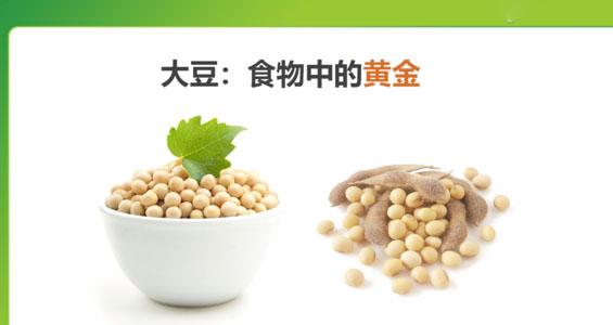 大豆蛋白肽的功效和作用
