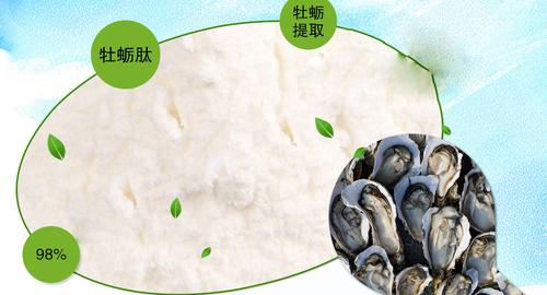 牡蛎肽的提取工艺