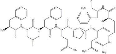 小分子肽在人体内的五大重要作用