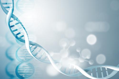 基因肽是什么?
