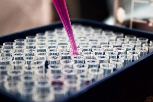 肽问肽答之小分子肽与生命的关系