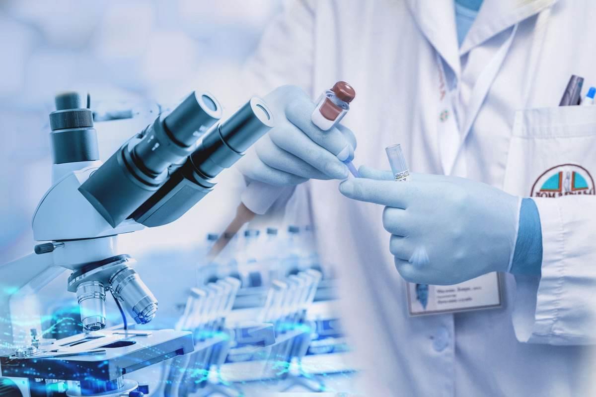 肽营养学的概念和地位