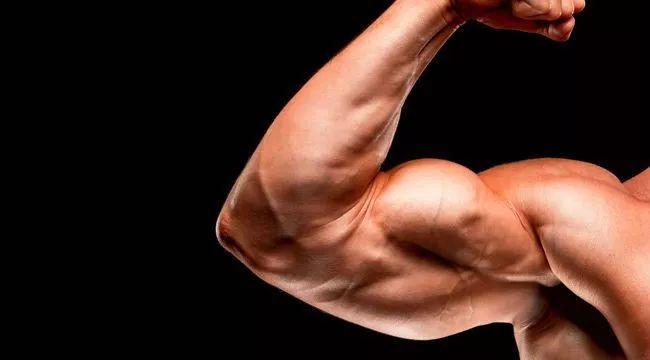 大豆肽的功效与作用2