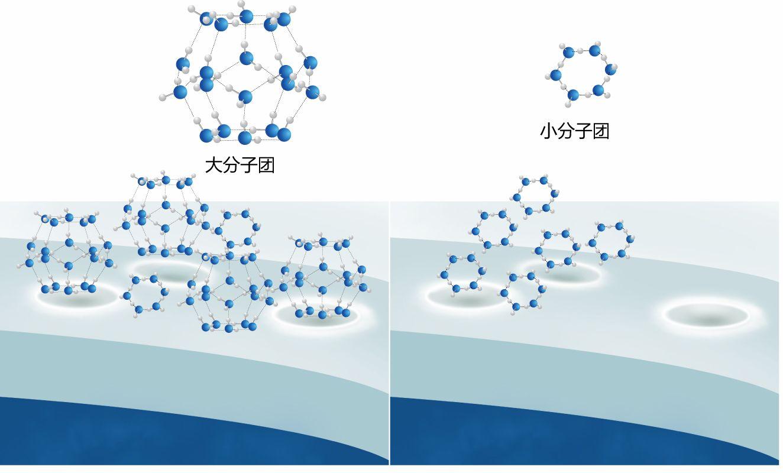 小分子肽的副作用和作用分析1