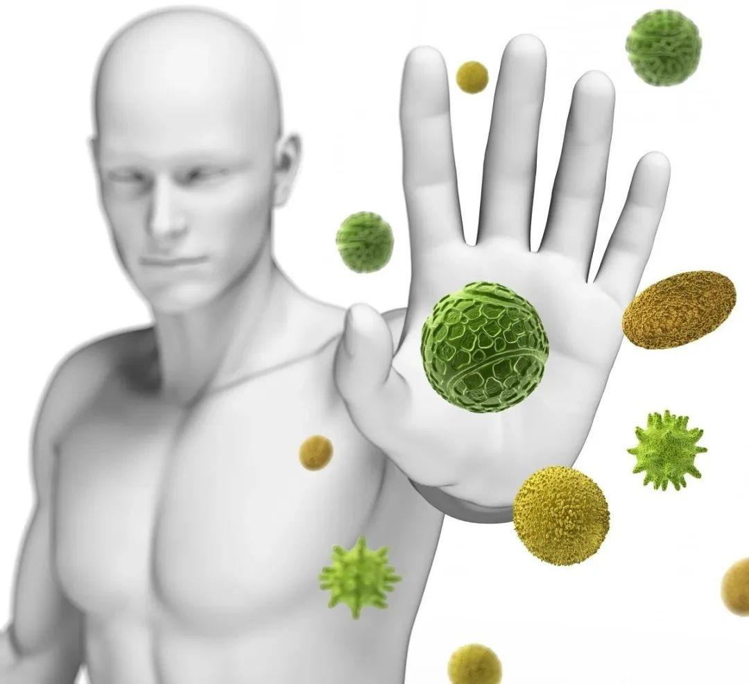 清蛋白多肽粉的作用是什么?2