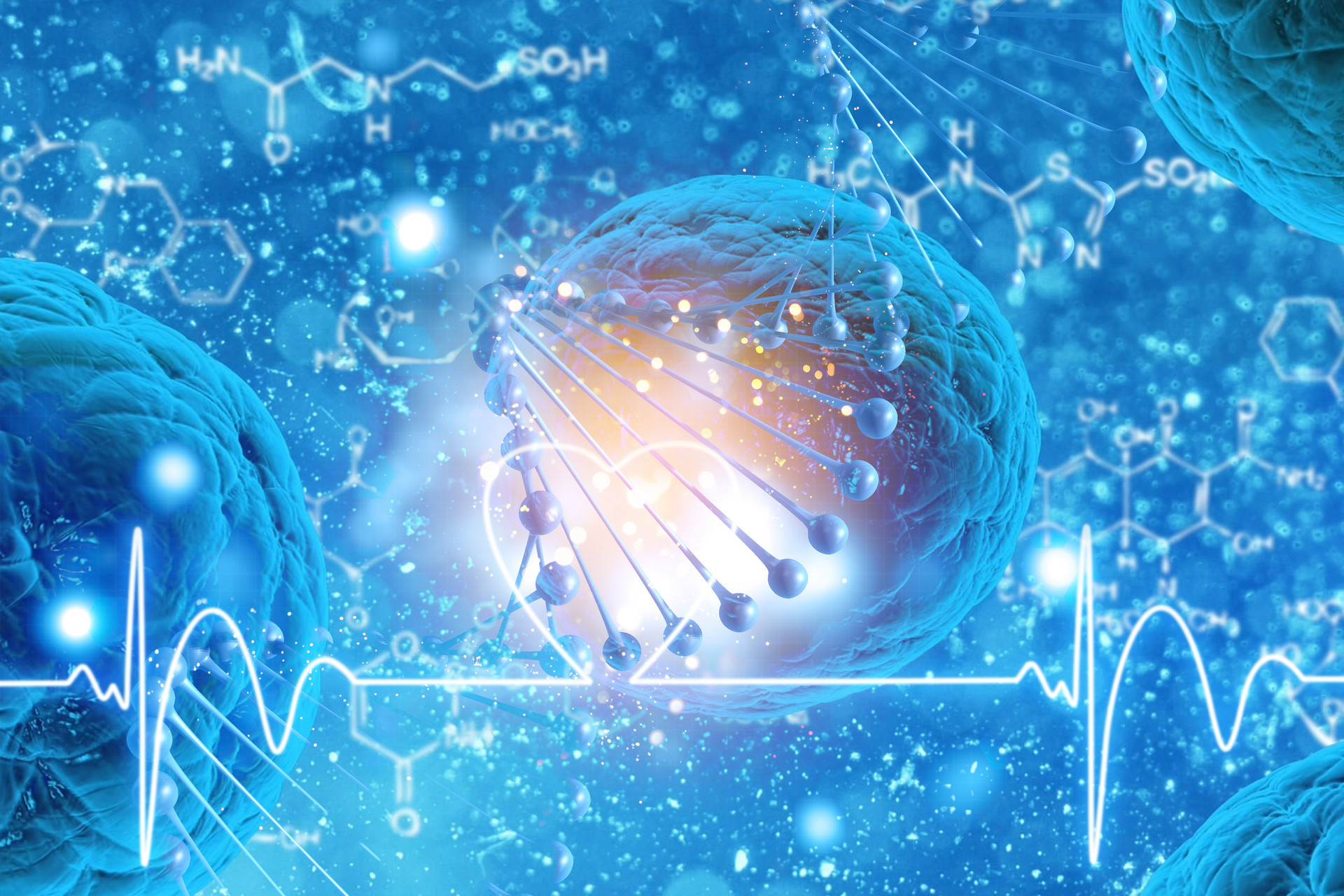 小分子肽的特点,功效及作用1