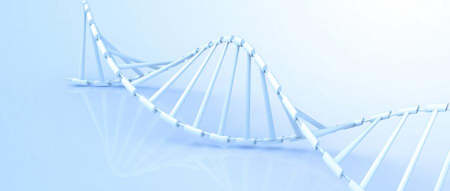 科学理性认识胶原蛋白肽