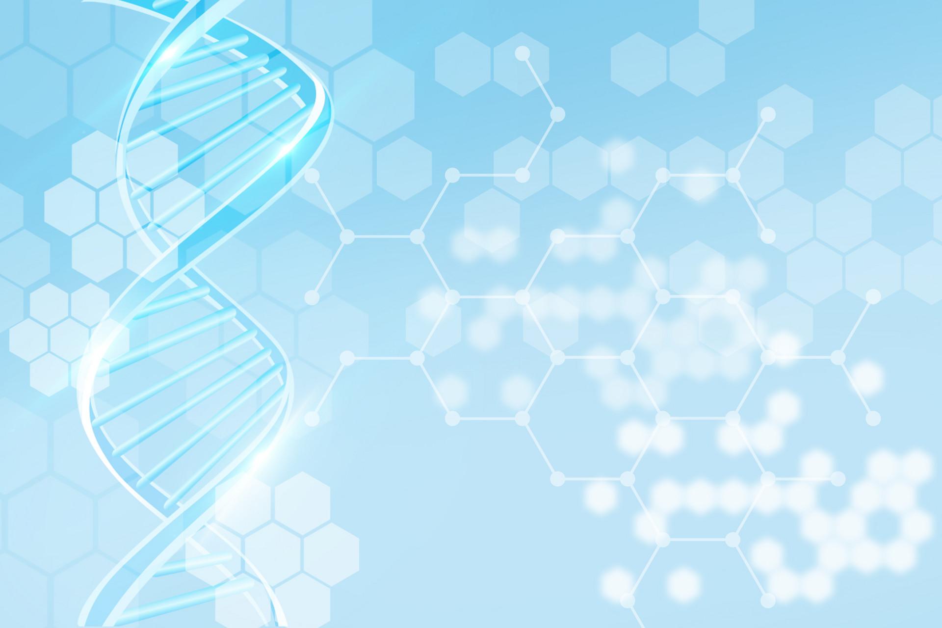 小分子肽的免疫调节与促吞噬肽